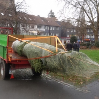 2018.11 Weihnachtsbaum Aktion
