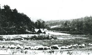 1750 Tippelskotten