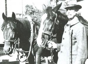 1954 Max Berg mit Pferd
