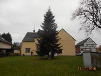 2016.11.22 HuB Weihnachtsbaum Aktion